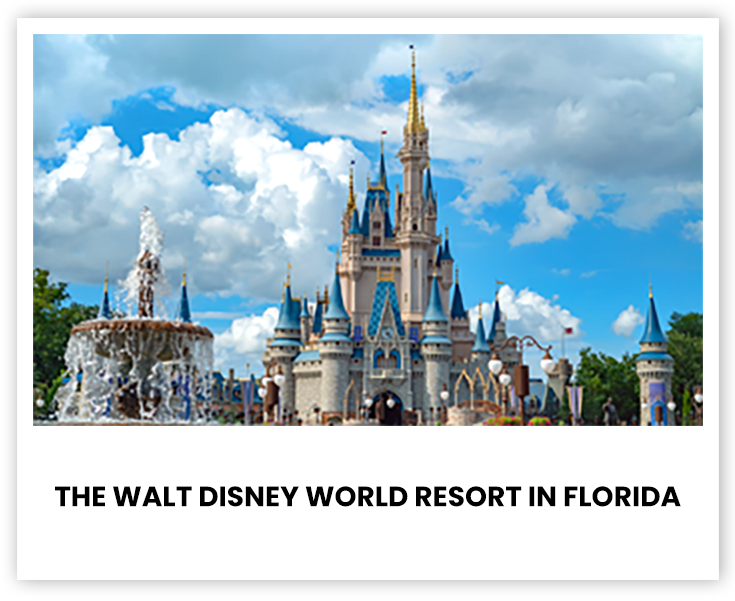 The Walt Disney World